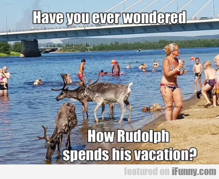 Have You Ever Wondered How Rudolph Spends...