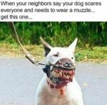 When Your Neighbors Say Your Dog Scares Everyone..