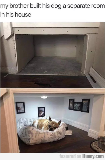 My Brother Built His Dog A Separate Room In His...
