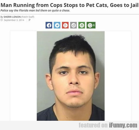 Man Running From Cops Stops To Pet Cats