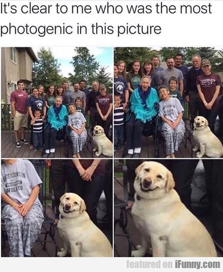 It's Clear To Me Who Was The Most Photogenic