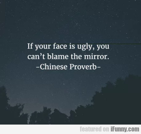 If Your Face Is Ugly, You Can't Blame The Mirror..