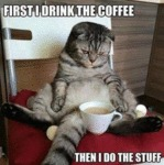 First I Drink The Coffee - Then I Do The Stuff...