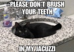 Please Don't Brush Your Teeth In My Jacuzzi..