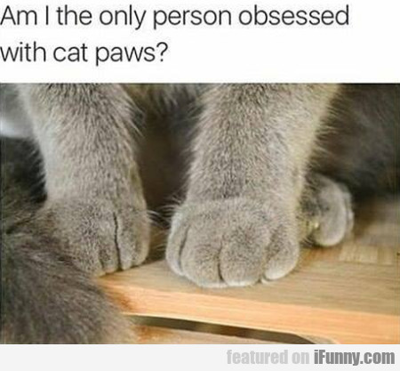 Am I the only person obsessed with cat paws