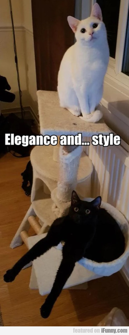 Elegance And... Style