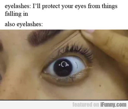 Eyelashes - I'll Protect Your Eyes From Things...