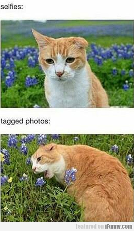 Selfies - Tagged Photos