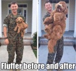 Fluffer Before And After