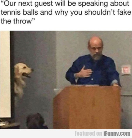 Our Next Guest Will Be Speaking About Tennis Balls
