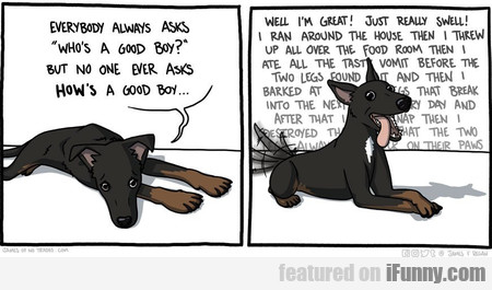 everybody always asks who's a good boy?