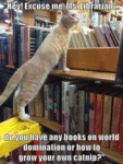 Hey! Excuse Me, Ms. Librarian
