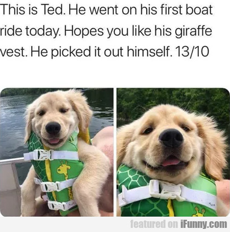 This Is Ted. He Went On His First Boat Ride Today