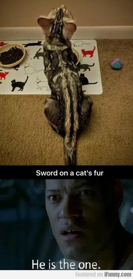 Sword On A Cat's Fur - He Is The One
