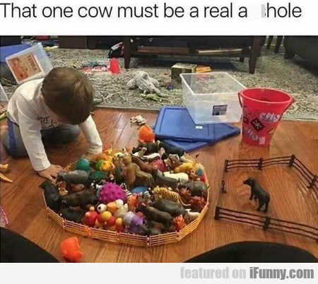 That One Cow Must Be A Real...