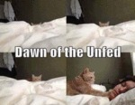 Dawn Of The Unfed