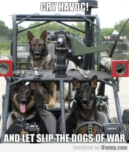 Cry Havoc! And Let Slip The Dogs Of War...