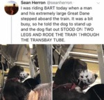 I Was Riding Bart Today When A Man And His...