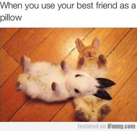 When You Use Your Best Friend As A Pillow...