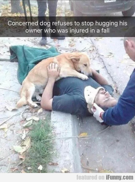 Concerned Dog Refuses To Stop Hugging His...