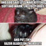 And God Said Let's Make Kittens Soft And...