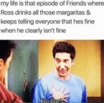 My Life Is That Episode Of Friends Where Ross...