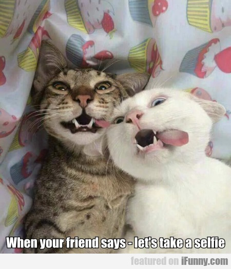 When Your Friend Says - Let's Take A Selfie
