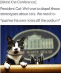 World Cat Conference - President Cat - We Have...