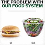 The Problem With Our Food System...