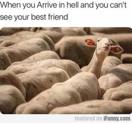 When You Arrive In Hell And You Can't See Your...
