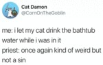 Me: I Let My Cat Drink The Bathtub Water While...