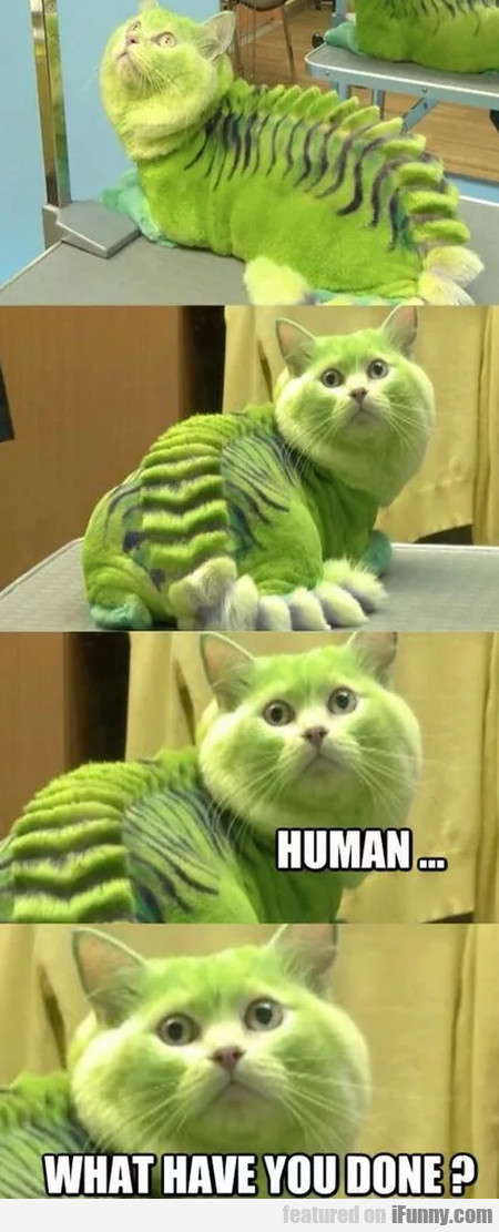Human... What Have You Done?