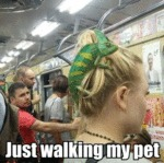 Just Walking My Pet...
