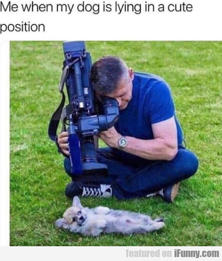 Me When My Dog Is Lying In A Cute Position...
