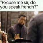 Excuse Me Sir, Do You Speak French - We..