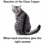 Reaction Of The Class Topper - When Back...