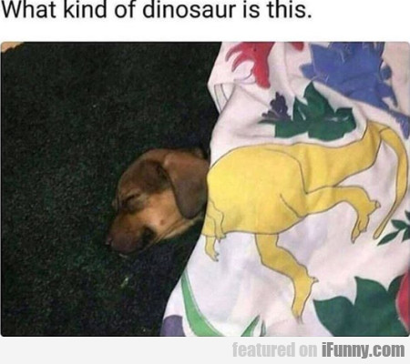 What Kind Of Dinosaur Is This