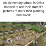 An Elementary School In China Decided To Use...