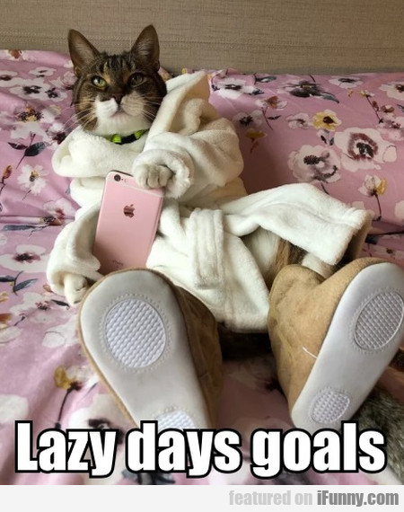 Lazy Days Goals