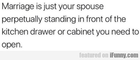 Marriage Is Just Your Spouse Perpetually...
