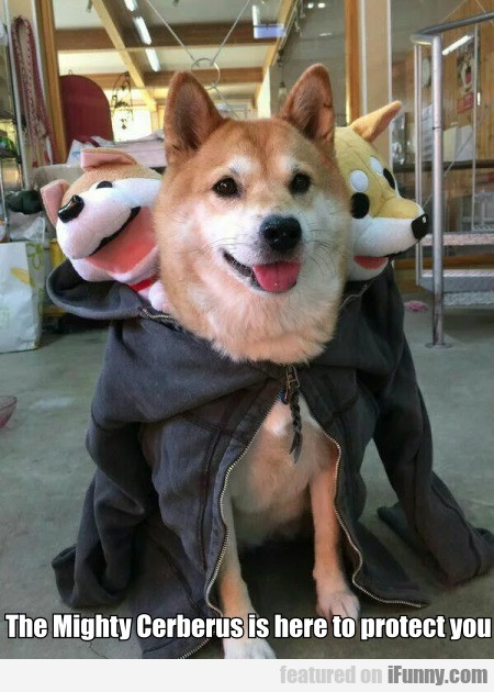 The Mighty Cerberus Is Here To Protect You