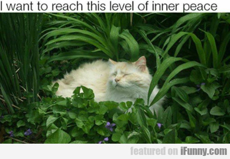 I Want To Reach This Level Of Inner Peace