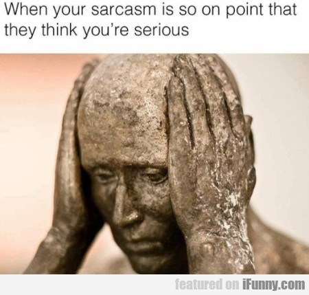 When Your Sarcasm Is So On Point That...