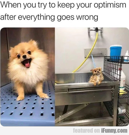 When You Try To Keep Your Optimism After...