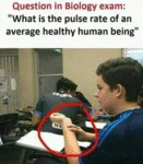 Question In Biology Exam - What Is The...