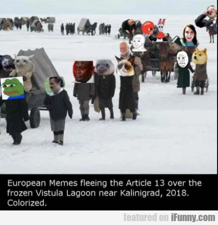 European Memes Fleeing The Article 13 Over...