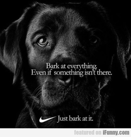 Bark At Everything. Even If Something Isn't There