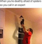 When You're Deathly Afraid Of Spiders So You...