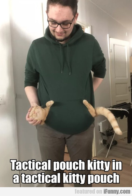 Tactical Pouch Kitty In A Tactical Kitty Pouch