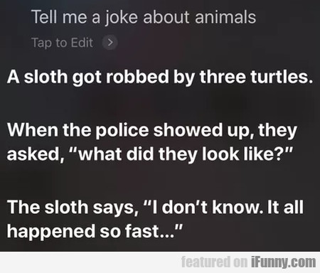 Tell Me A Joke About Animals - A Sloth Got...
